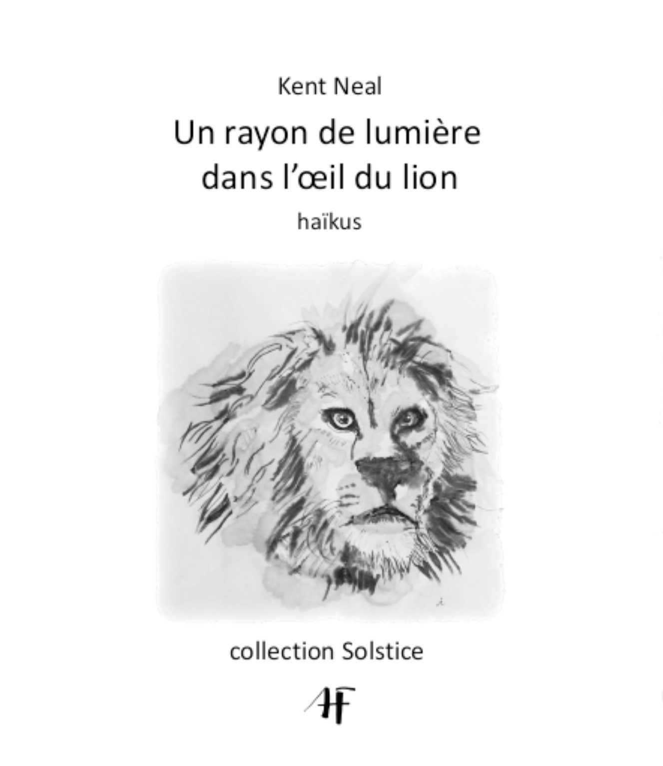 Cover of A Ray of Light in the Lion's Eye